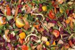 Konposta Araba, una iniciativa para mejorar el compostaje