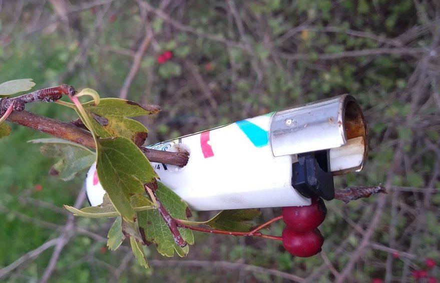 mechero basura arbol zabalgana