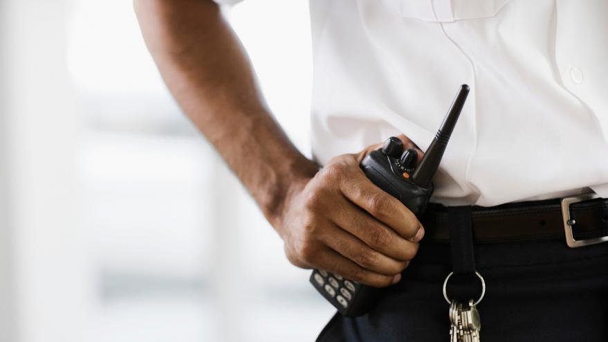 movilización vigilantes seguridad alava