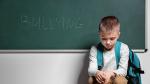 acoso escolar euskadi