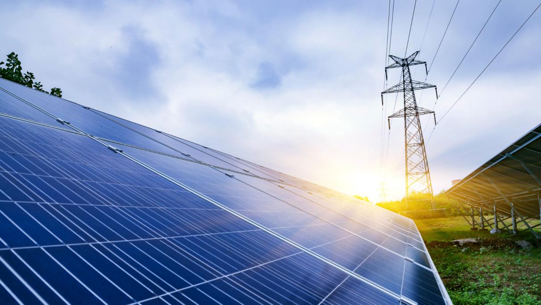 Los agricultores denuncian presiones para instalar paneles solares en Álava | Gasteiz Hoy