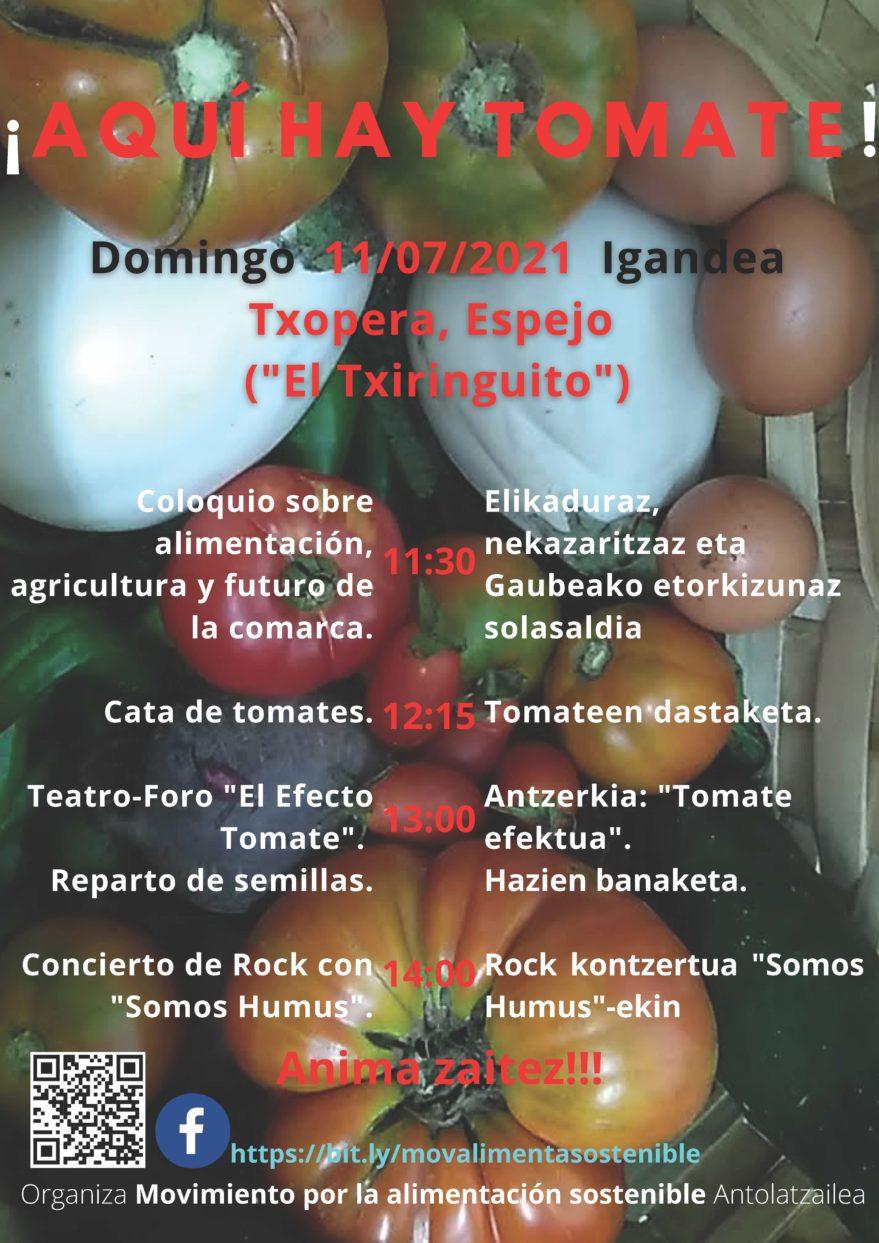Aqui hay tomate macroinvernadero valdegovia