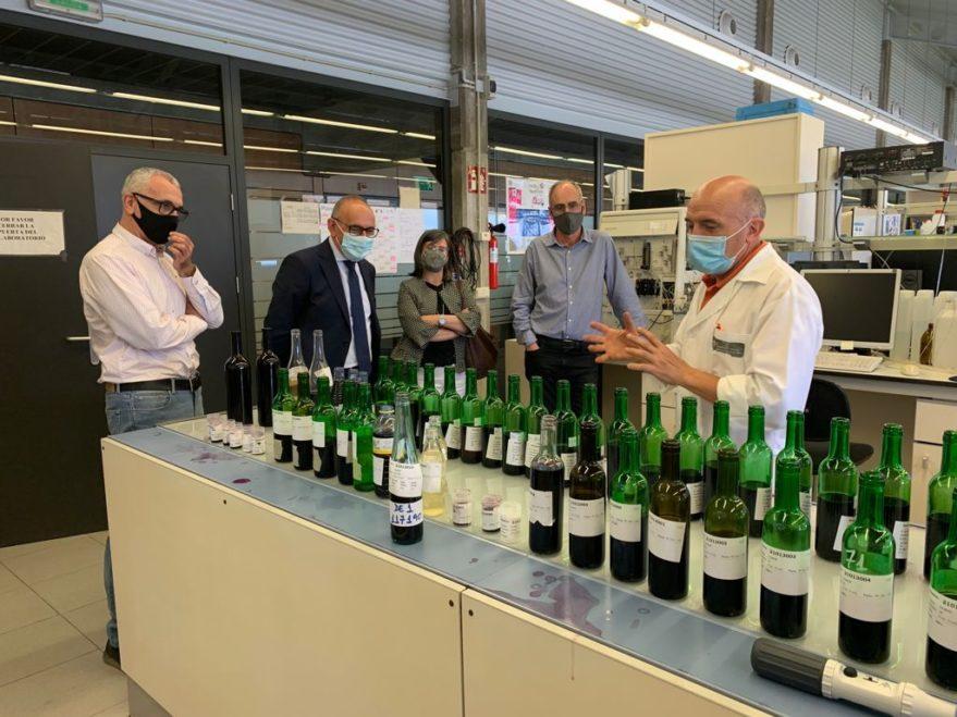 Informe sobre las tormentas de la Casa del Vino de Rioja Alavesa