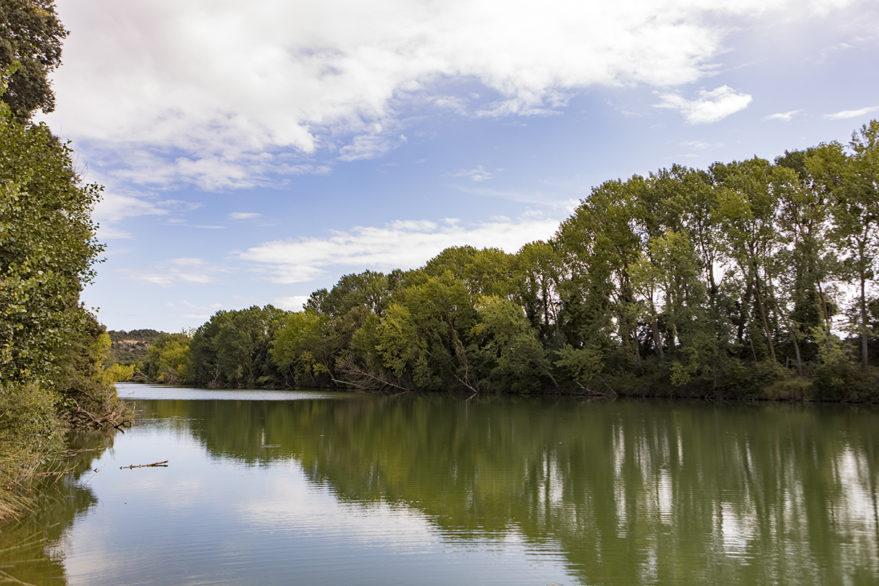 Río Ebro en Fontecha