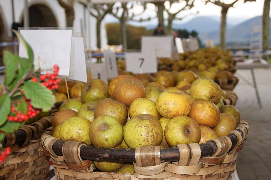 feria gastronomica goierri manzana reineta gabiria