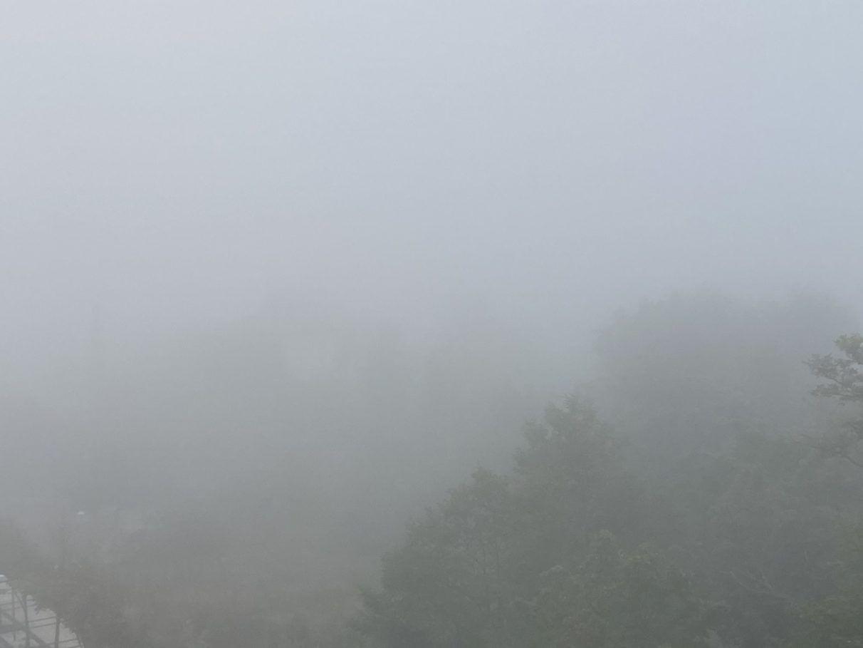 niebla en vitoria