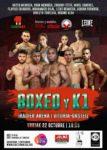 boxeo k1 iradier arena vitoria